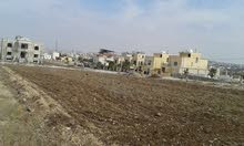 ارض للبيع حوض دبات ابو النصر قطعه رقم 523 من المالك مباشره