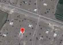 أنا المالك أرض سكنية ف الوهرة بالقرب من خط الغاز