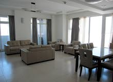 Elegant 3 BR FF Apartment in Reef Island For Rent
