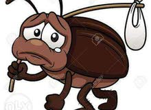 تنظيف مباني ومكافحة حشرات