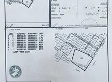 ارض سكنية قايم عليها منزل قديم وادي عدي مساحة الارض 1880م