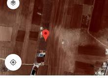 قطعة ارض (مزرعة )للبيع على طريق اربد
