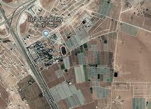ارض 500م في الطنيب خلف جامعة الاسراء للاستثمار الجاد