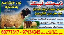 اغنام عربي نعيمي  لتواصل 60777317 مع التوصيل لباب المنزل مجانا