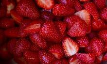 فراولة ليبية انتاج محلي