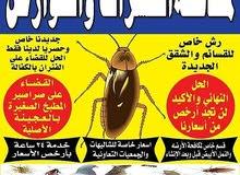 مكافحة حشرات وقوارض 55595450