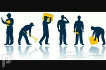 توفير عمالة رجالية للشركات والمصانع