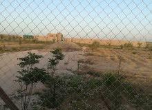 القنيطره من اراضي جنوب عمان