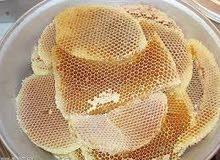 للبيع عسل سمر حضرمي اصلي 100%