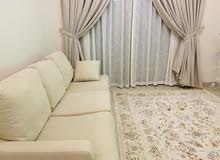Sofa & Carpets