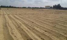 امتلك قطعه ارض زراعيه ابتداء من 3 فدان فأكثر جاهز على الزراعه بالمياه والكهرباء بسعر مغري جدا