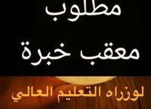 مطلوب معقب تصديق شهادات جامعيه
