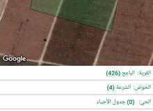 قطعتين أرض 17+14 دونم في المفرق قرية  الباعج للبيع