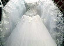 ن زفاف بيضاء ملونه بسعر عررررررطه أرخص من قيمتهم بكثير
