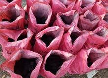 فحم طبيعي للمشاوي من افريقيا و فيتنام