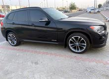 BMW X1. panoramic roof   full option