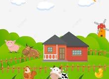 مطلوب مزرعه او جاخور بجبد للأجار سنوي