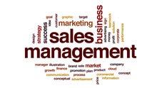 مدير مبيعات بخبرة أكثر من 15 سنة في مجال المبيعات وأدارتها
