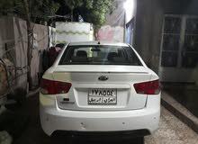 Gasoline Fuel/Power   Kia Cerato 2011