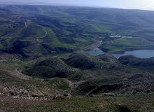 قطعه ارض 50 دونم بسعر مغري السلط - سومياقرب من سد الملك طلال