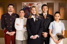 مطلوب فريق عمل كامل لفنادق 5 نجوم في شرم الشيخ
