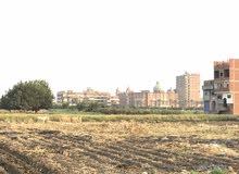 ارض مباني للبيع
