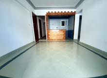 شقة 2 غرفة من المالك مباشرة بسعر مغري هاااي لوكس مسجلة شاطي النخيل اسكندرية