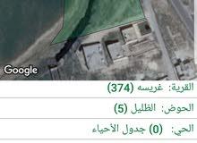اراضي الزرقاء غريسه/ حوض الضليل