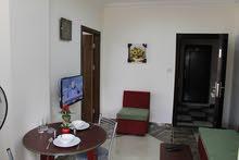 شقق صغيرة فاخرة مفروشة للايجار في الجبيهة  Furnished  small apartments for rent