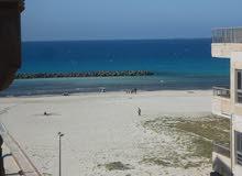 شقة وروف خاص ثالث نمرة من البحر مسجلة في شاطئ النخيل