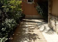 شقة دوبلكس للبيع بمدينة نصر الحى الاول