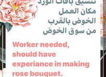 فرصة توظيف (انثى عمانيه )