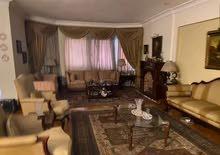 شقة للبيع 265م بمدينة نصر المنطقة السادسة