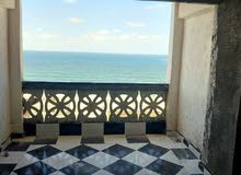 apartment for sale Basement directly in Agami