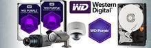 هردسك البنفسجي من شركة HDD 1TB WD