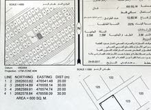 ارضين للبيع في العوينات 29 فرديات لكل قطعه 5200 تم تنزيل السعر