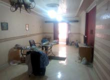 (فرصة لن تكرر) شقة للايجار شارع الشيشني المريوطية فيصل المساحة