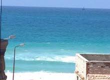 امتلك شقه سوبر لوكس في اجمل شواطئ الساحل الشمالي