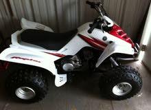 Yamaha Raptor 80cc 2012 (Used)