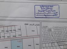 الجيزه حوض الموارس 4.150 دونم سكن ب