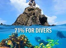learn to scuba dive 50 % discount