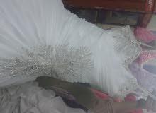 فساتين زفاف مقاسات بالطرحة الاسبانى