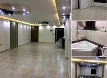 New Apartment for rent in Zagazig