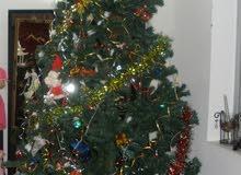 شجرة عيد الميلاد استعمال قليل