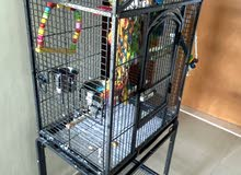 bird cage with stand and toys