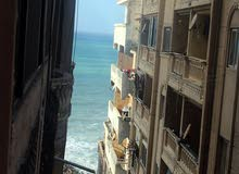 لمحبي الرقي والتميز العقاري اسكن في ارقى احياء الاسكندرية في وسط البلد