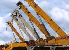 Crane is available for sale directly from the owner