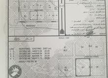 .... عاجل.... ارض سكني تجاري في الخط الأول حره من النظام