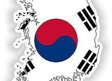 كورس في اللغة الكورية اون لاين