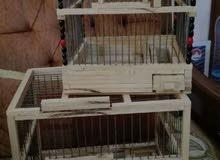 قفصين خشب للبيع